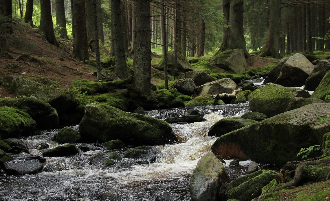 Načerpejte sílu z krás přírody
